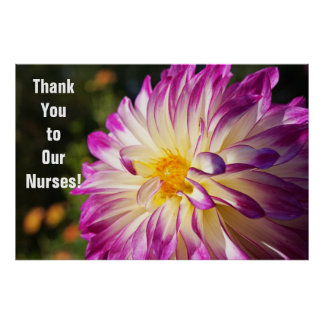 Thank you to Our Nurses Posters Nurse's Week
