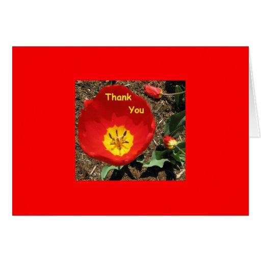 Thank You Tulip Card