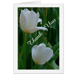 """THANK YOU"" TWO WHITE TULIPS WITH RAINDROPS CARD"