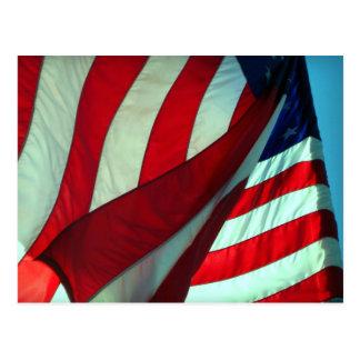 Thank You  ... Veterans Day Postcard