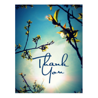 Thank You Vintage Nature Photography Postcard