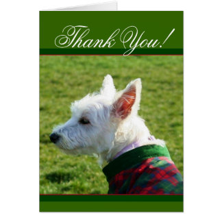 Thank You West Highland White Terrier card
