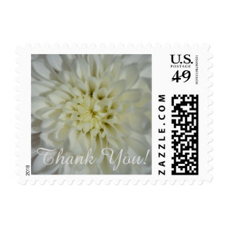 Thank You (white blossoms) Postage