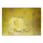 Thank You! Yellow Antique Roses Cards
