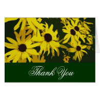 Thank you, yellow daisy flowers cards