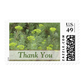 Thank You Yellow flowers Stamps