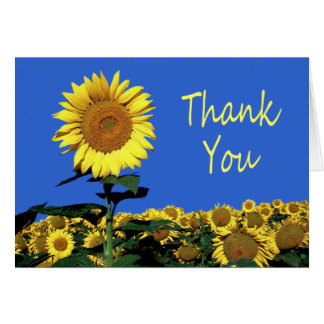 Thank You Yellow Sunflower Floral Note Card