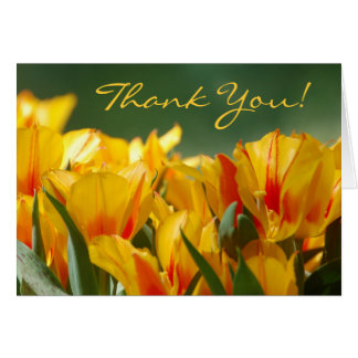 Thank You Yellow Tulips Card