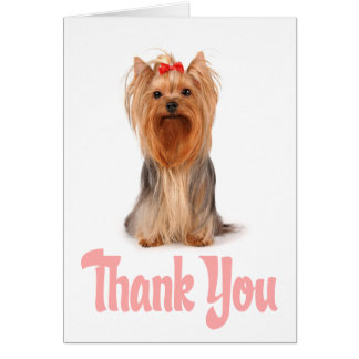 Thank You Yorkshire Terrier Puppy Card - Blank