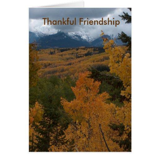 Thankful Friendship Cards
