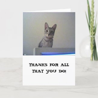 Thanks for all that you do! thank you card