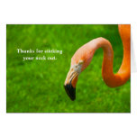 Thanks for sticking your neck out - Flamingo Cards