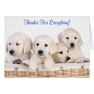 Thanks Labrador Retriever Puppy Dogs Card