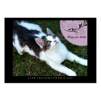 Thanks Life Lessons From A Cat ACEO Art Cards Business Card Template