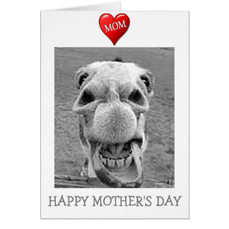 "THANKS ""MOM"" ON MOTHER'S DAY (MULEISHLY) CARD"