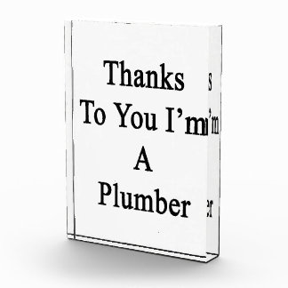 Thanks To You I'm A Plumber Award