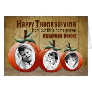 Thanksgiving - 3 Pumpkin photo inserts - Fun Card