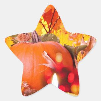 Thanksgiving allegory star sticker