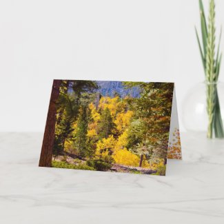 Thanksgiving and Fall Card card