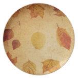 thanksgiving autumn dinner plate.