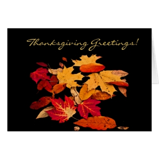 Thanksgiving Autumn Foliage in Orange Red Yellow