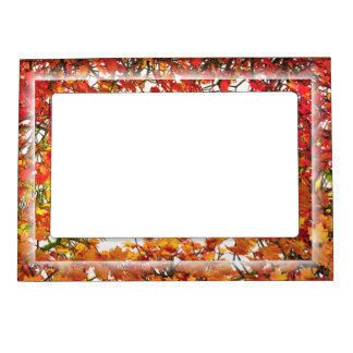 Thanksgiving Autumn Maple Leaves Magnetic Frame