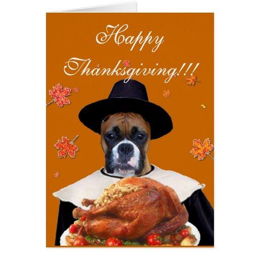 Thanksgiving boxer dog greeting card