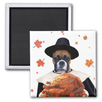 Thanksgiving boxer magnet magnet