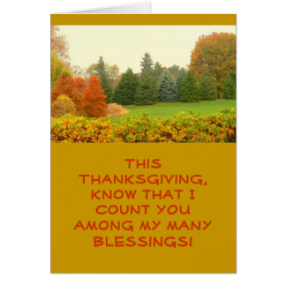 THANKSGIVING CARD, COUNTING BLESSINGS GREETING CARD