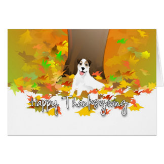 Thanksgiving Card - Jack Russell Terrier Dog