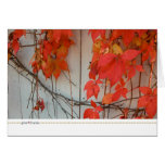 thanksgiving card_red story greeting card