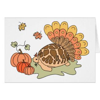 Thanksgiving Card (star tortoise)