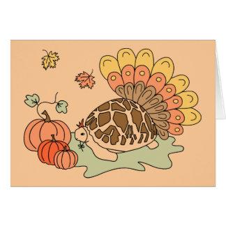 Thanksgiving Card (star tortoise, beige)