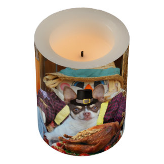 Thanksgiving Chihuahua Dog LED candle