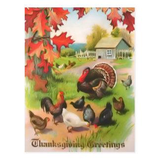 Thanksgiving Countryside Greetings Postcard