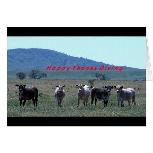 Thanksgiving cows card