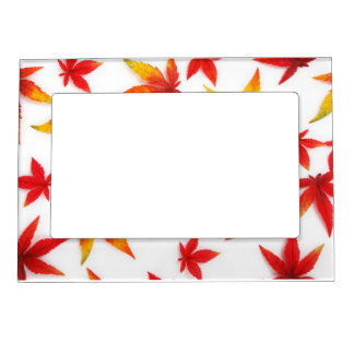 Thanksgiving Day Picture Frame Magnet