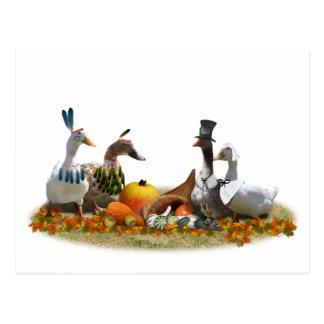 Thanksgiving Ducks - Pilgrims & Indians Postcard