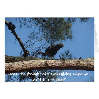 Thanksgiving for Vegetarians Greeting Card