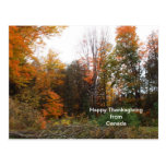 Thanksgiving Greeting from Canada-Autumn Colours Post Card