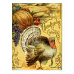 Thanksgiving Greeting with a Turkey Postcard