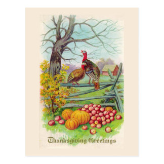 """Thanksgiving Greetings"" Postcard"