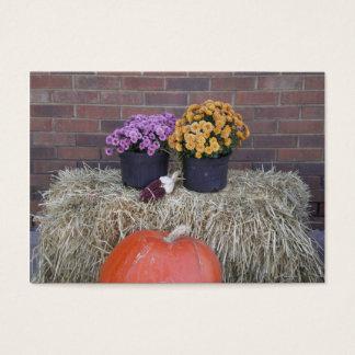 Thanksgiving Harvest Fall Scene Business Card