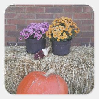 Thanksgiving Harvest Fall Scene Square Sticker