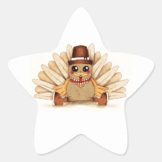 Thanksgiving Holiday Turkey Pilgrim Art Drawing Star Sticker