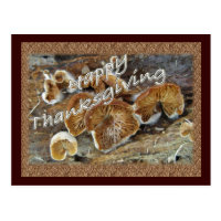 Thanksgiving Inside Out Mushrooms Items Postcard