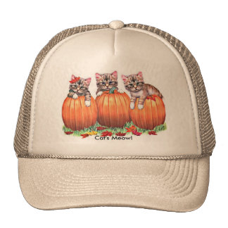 Thanksgiving is the Cat's Meow Mesh Hats
