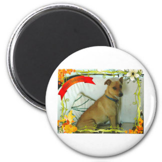 Thanksgiving items 2 inch round magnet