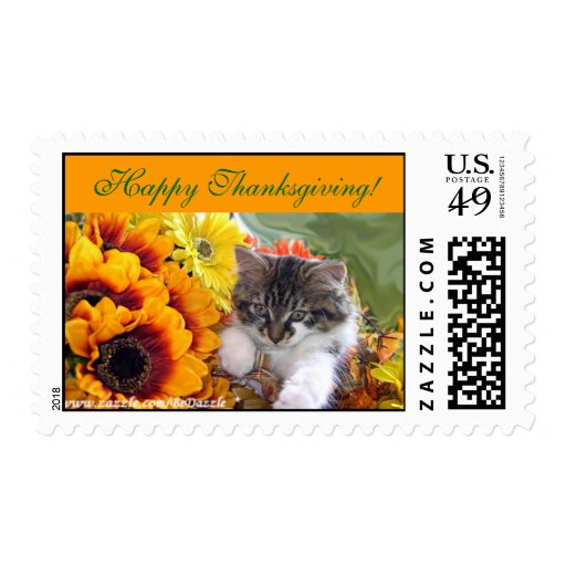 Thanksgiving Kitty Cat, Fall Sunflowers Flowers Postage Stamps