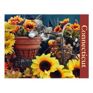 Thanksgiving Kitty Cat Kitten on Bike, Flower Pot Postcard